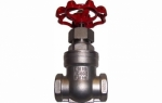 Stainless Gate Valve 316 BSP Parallel
