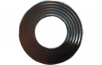 Graphite IBC Joint Ring PN16 Maxigraphs